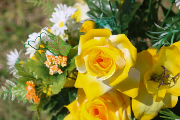 Flowering Colors stock photo