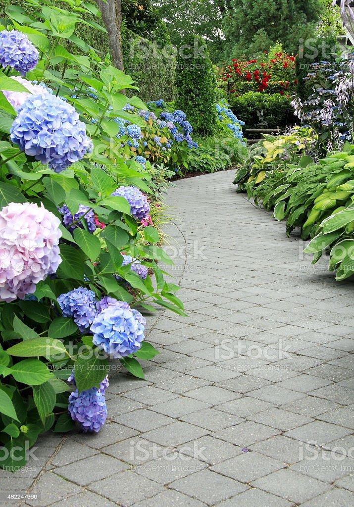 Flowering garden path. stock photo