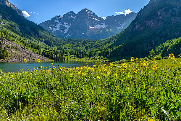 Flowering Mountain Valley stock photo