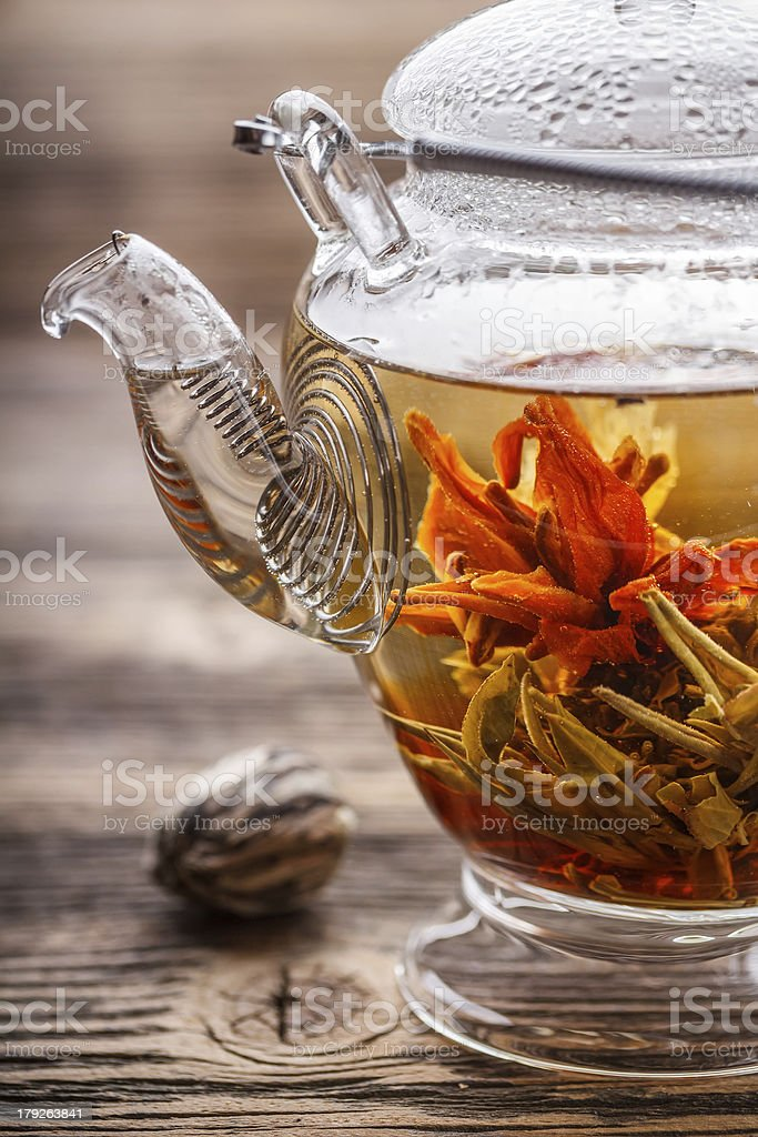 Flowering tea stock photo