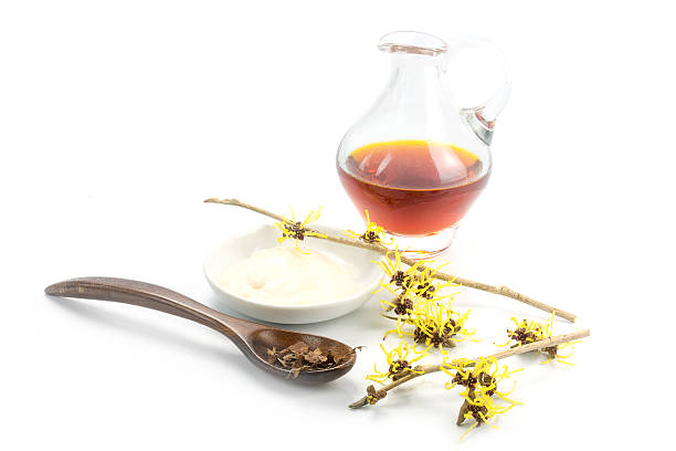 flowering witch hazel (Hamamelis), dried leaves, cream, essence flowering witch hazel (Hamamelis), dried leaves, cream and essence for homemade skin care cosmetics and bath additive, isolated with shadow on a white background saxifragales stock pictures, royalty-free photos & images