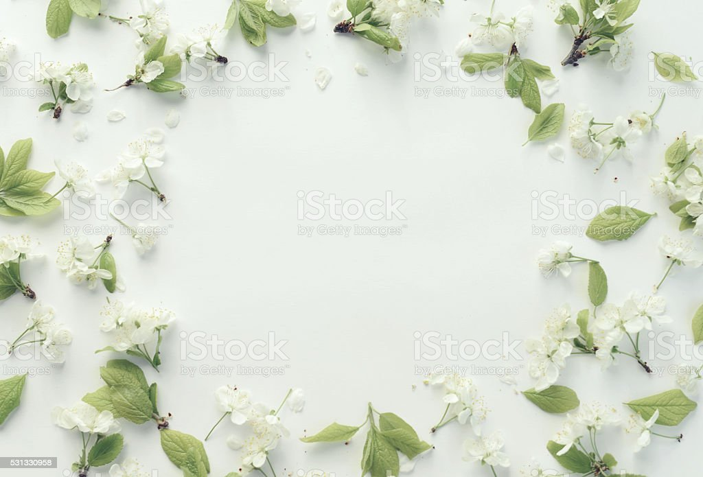 flower,petals and leaves, composition flat lay stock photo