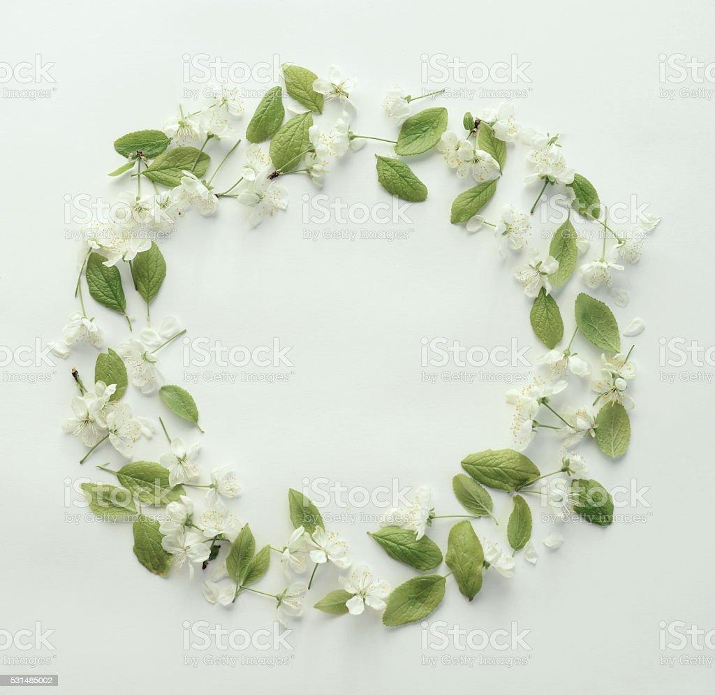 Blume, Blütenblätter und Blätter, Komposition flache Legen – Foto
