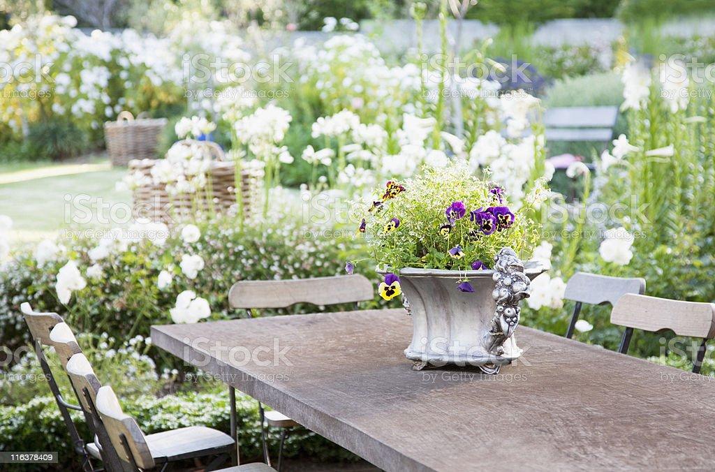 Flowerpot on garden table royalty-free stock photo