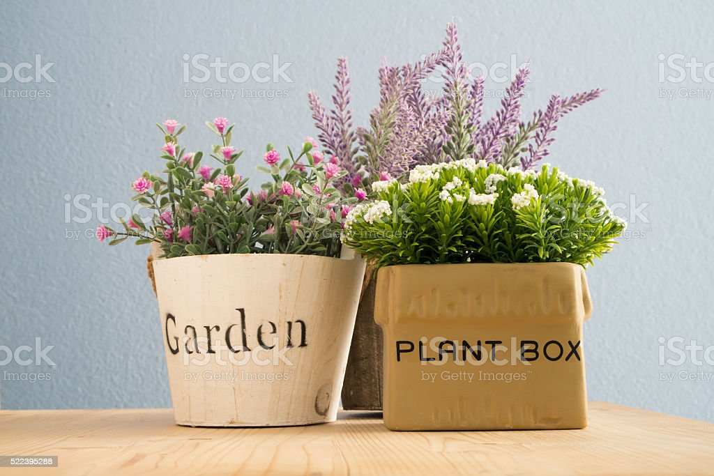 flowerpot with colorful flower on wood floors. stock photo