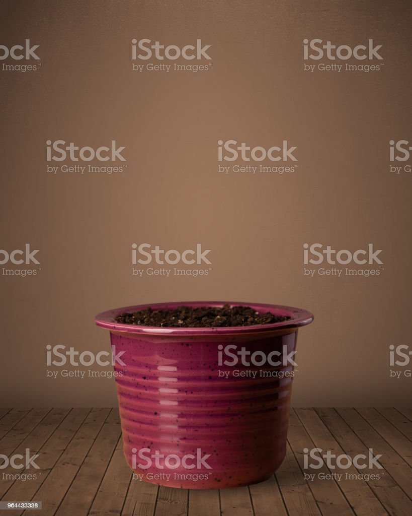 Flowerpot with copy space - Royalty-free Blank Stock Photo