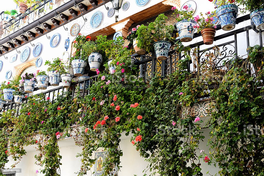 Flowerpots in Granada stock photo
