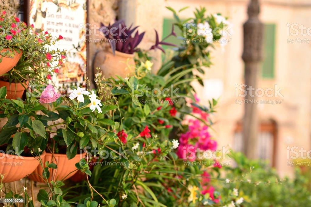 Blumentopfe Auf Der Wand Von Valldemossa Auf Mallorca Balearen