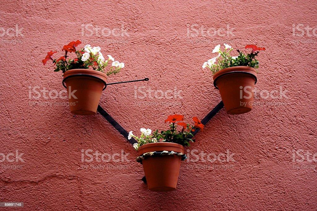 flowerpots royalty-free stock photo