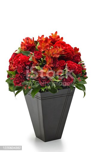 red flowers and golden candles on white background