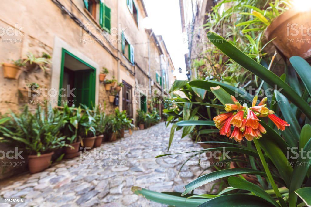 Flowers and a Small street in Valldemossa stock photo