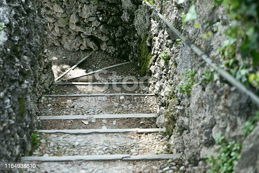 Flowers And Aromatic Plants In A Botanical Garden: A Stone Stairway In The Park