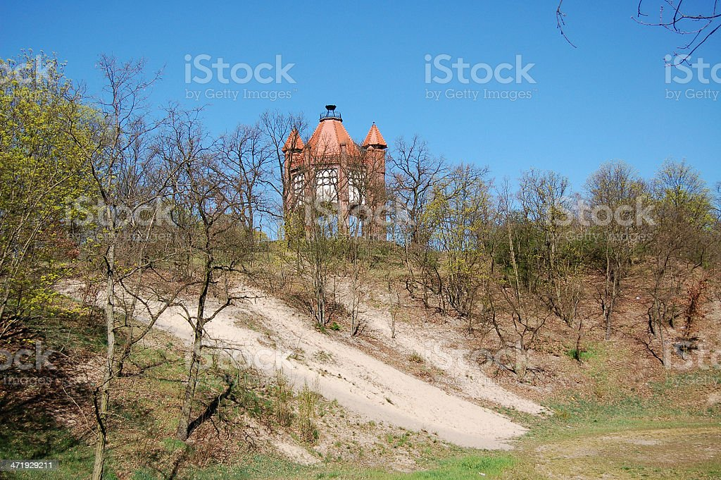 flowers and Bismarkturm in Rathenow (Germany) stock photo