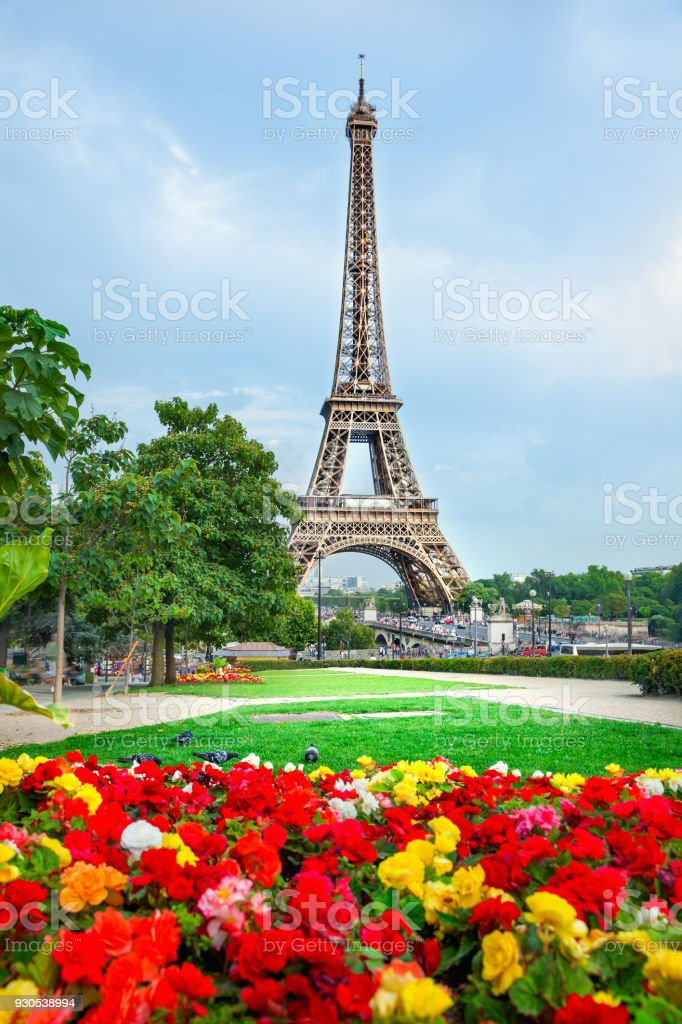 Flowers and Eiffel tower stock photo