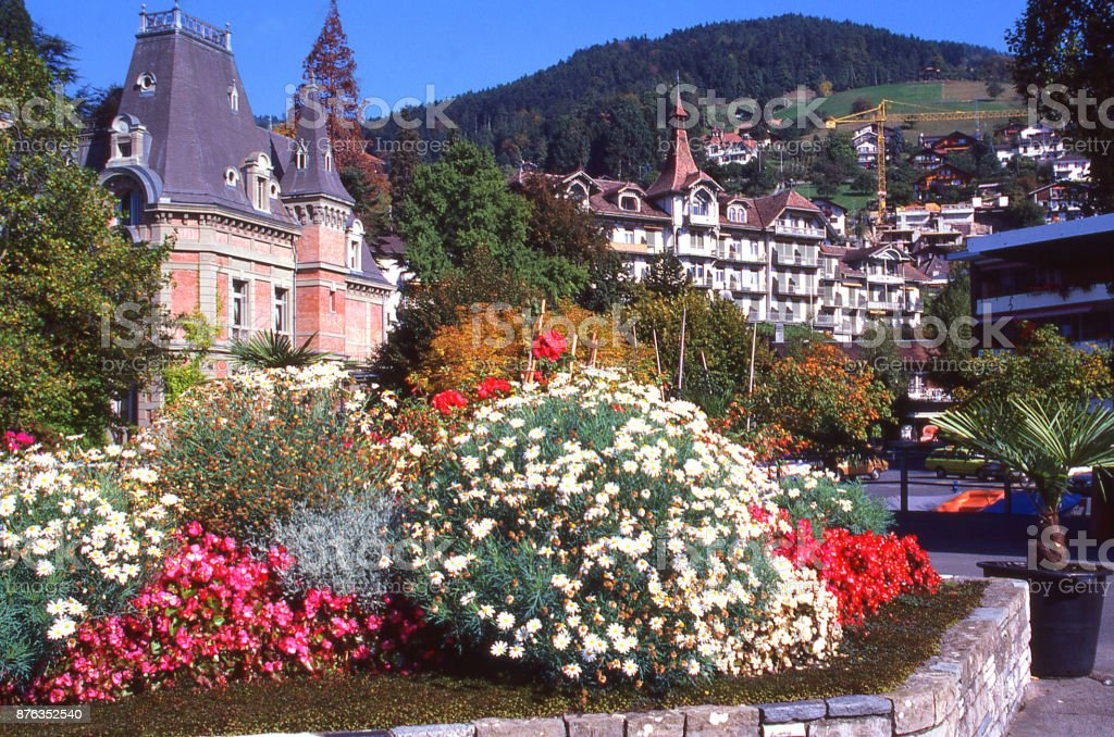 Flowers and gardens in Interlaken near Brienz on Brienzersee Switzerland Europe stock photo