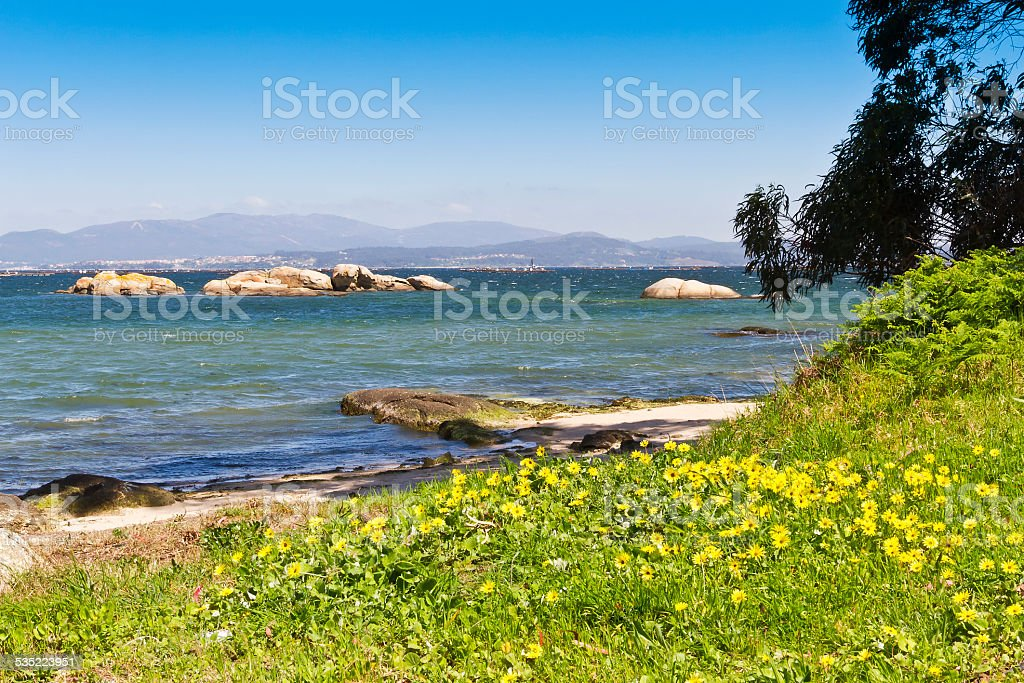 Flowers and islets royalty-free stock photo
