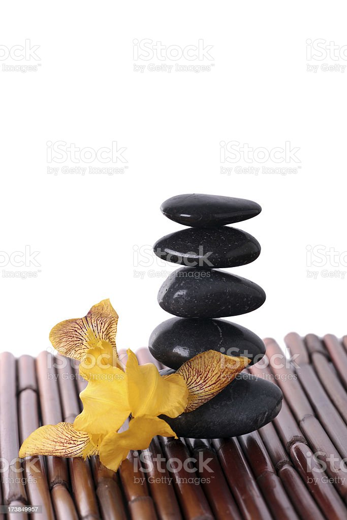 Flowers and Lava Stones Isolated on White royalty-free stock photo
