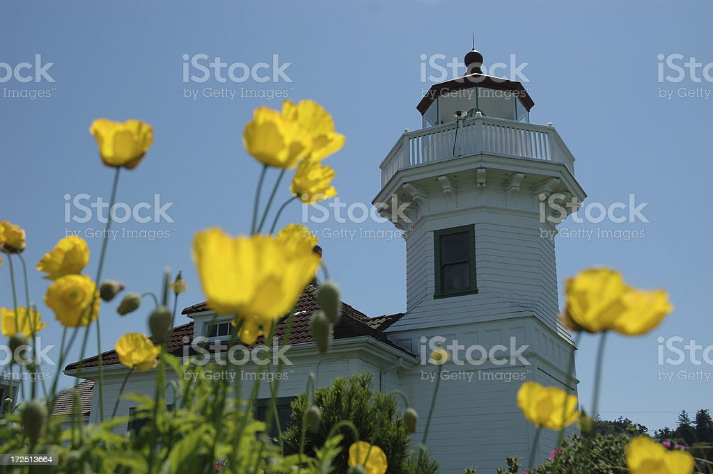 Flowers and lighthouse royalty-free stock photo