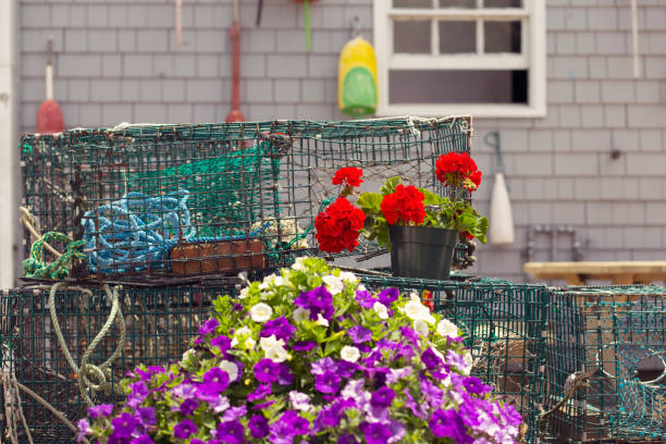 Flowers and Lobster Traps stock photo