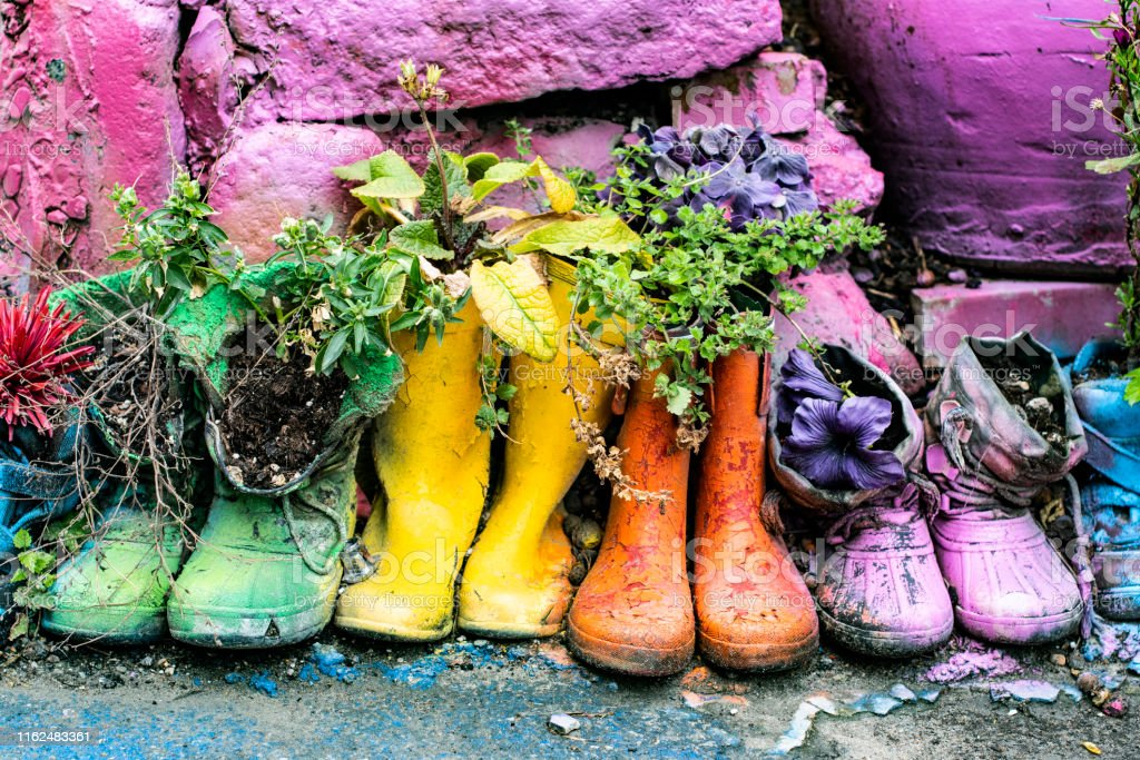 Flowers and plants planted in old rubber boots, photographic effects