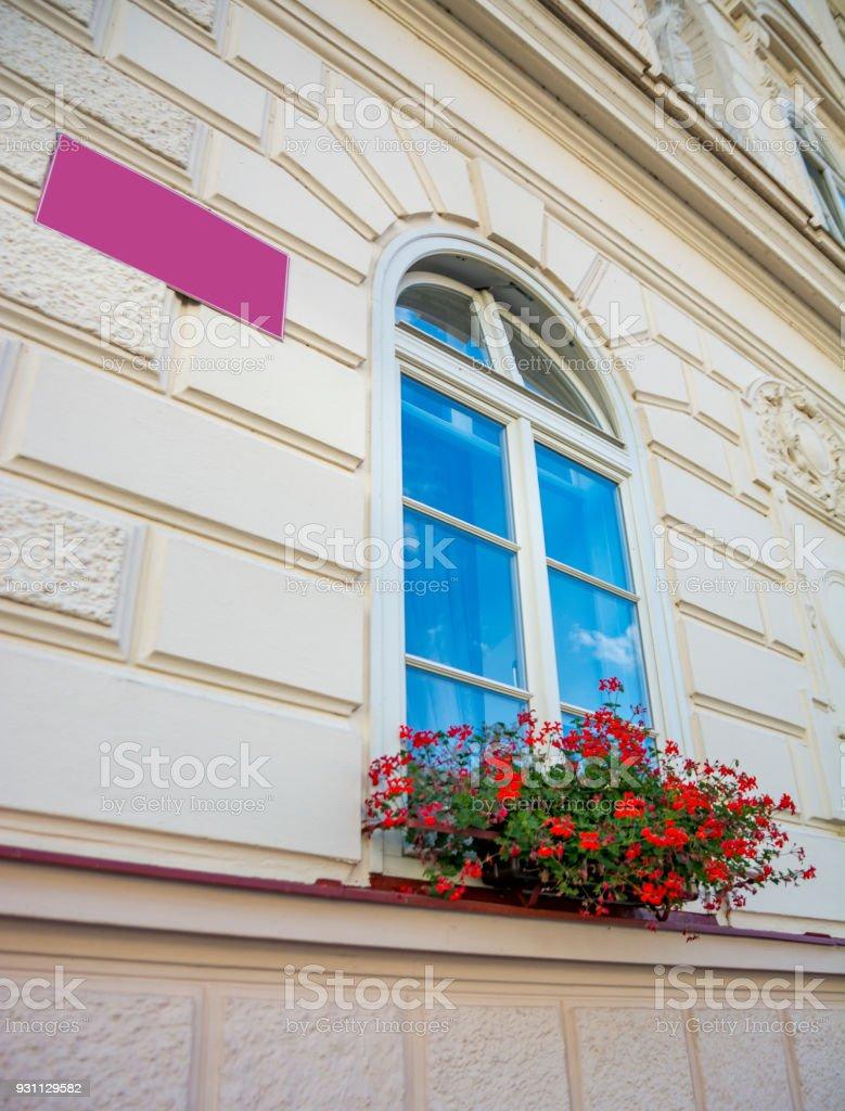 Çiçekler ve tarihi bir binada camda - Royalty-free Dikey Stok görsel