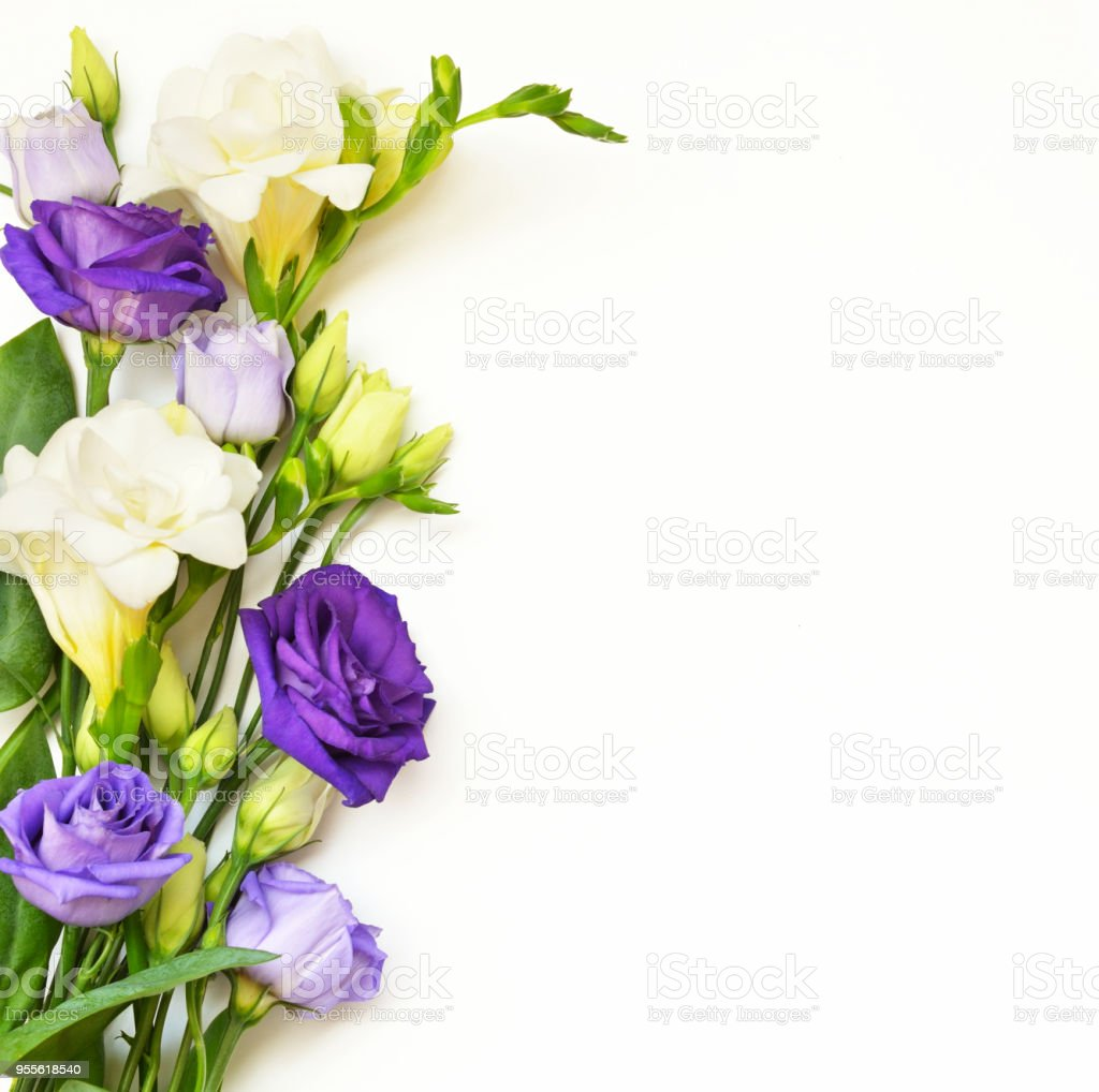 Flowers arrangement on white background стоковое фото