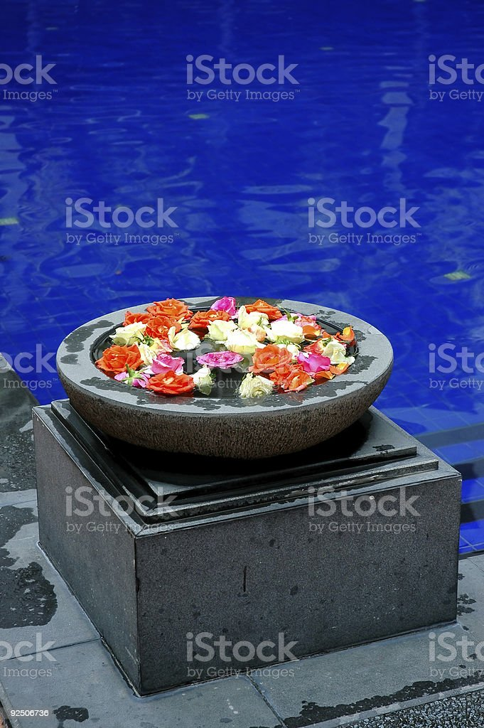 Flowers at pool royalty-free stock photo