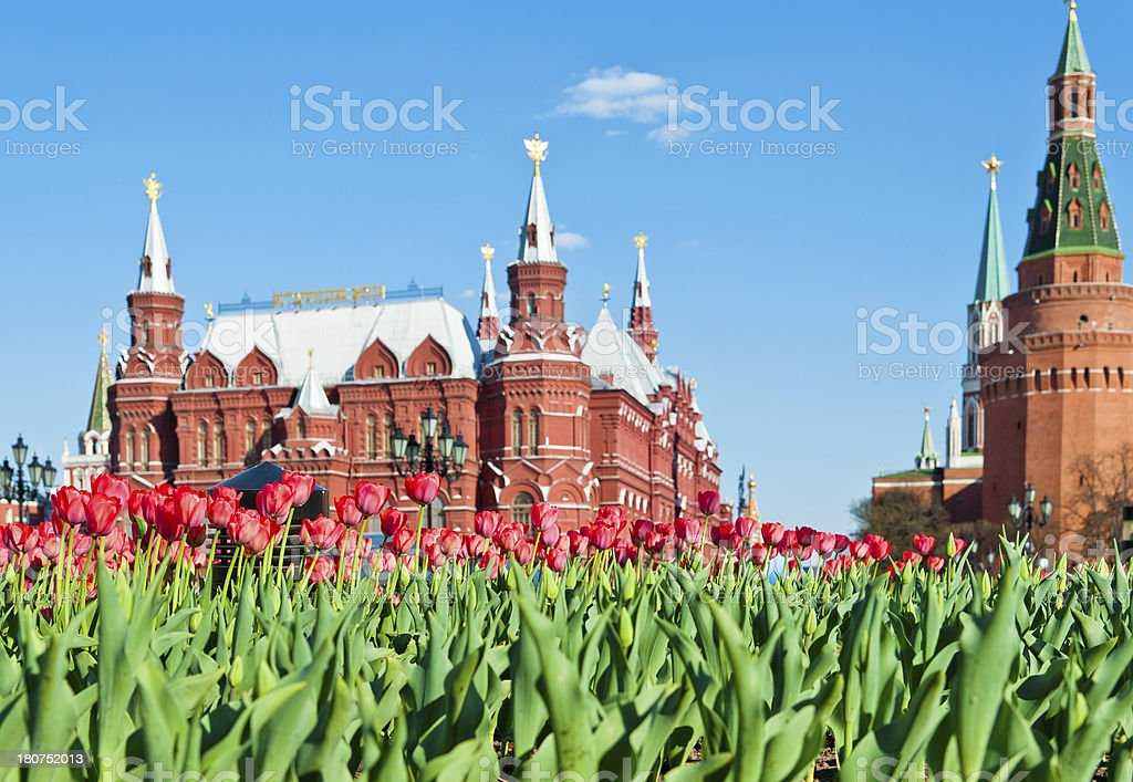 Flowers at Red Square stock photo