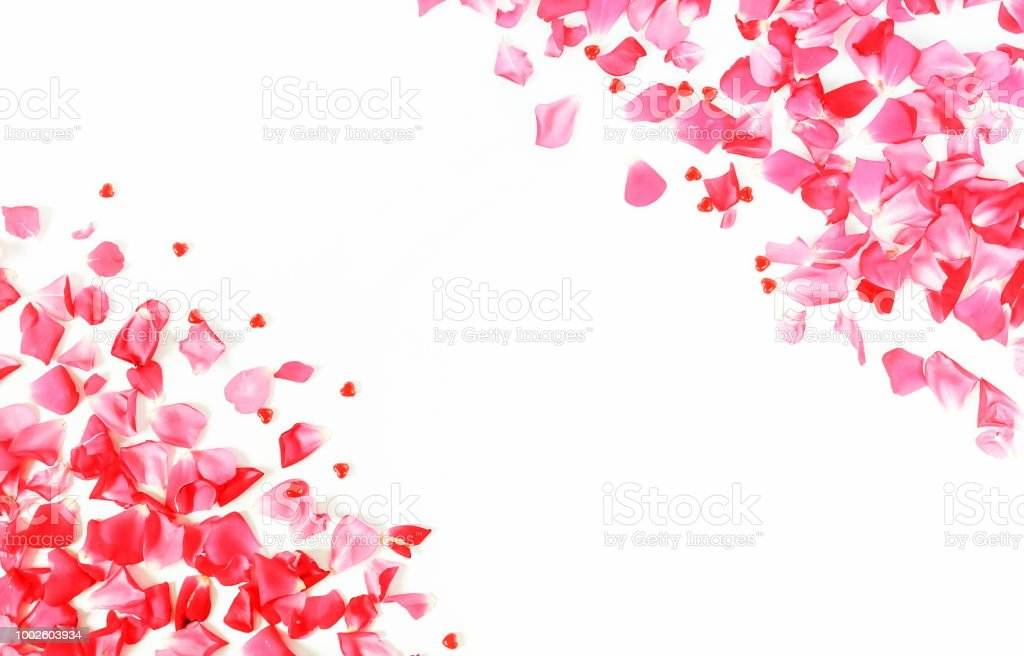 Flowers Background Frame Of Petals Pattern Of Pink Roses And Red