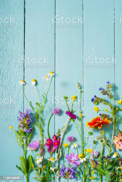 Photo of Flowers background