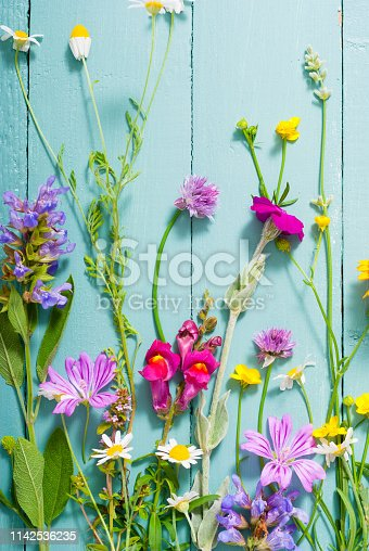 herbal and wildflowers on blue wooden table background