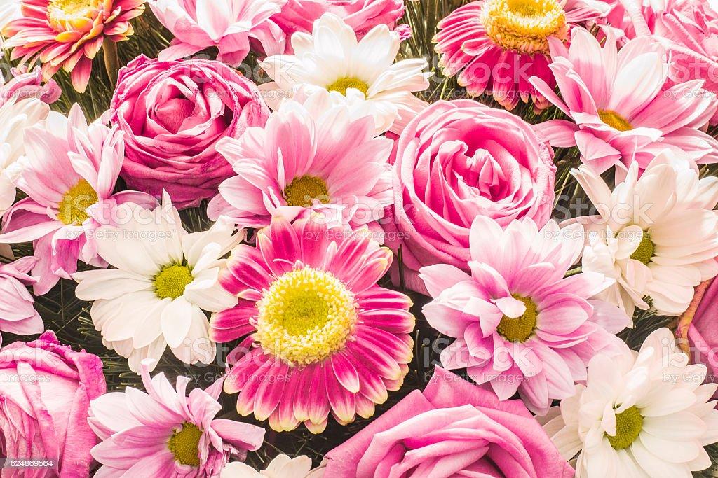 Fleurs d'arrière-plan  - Photo