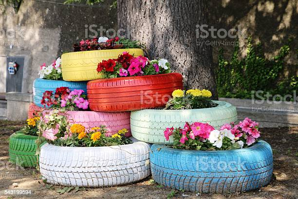 Flowers blooming in old car tires picture id543199594?b=1&k=6&m=543199594&s=612x612&h=eo6o 0ivi7jwbizstep3 wbi yg9ugok dcgwdegeoo=