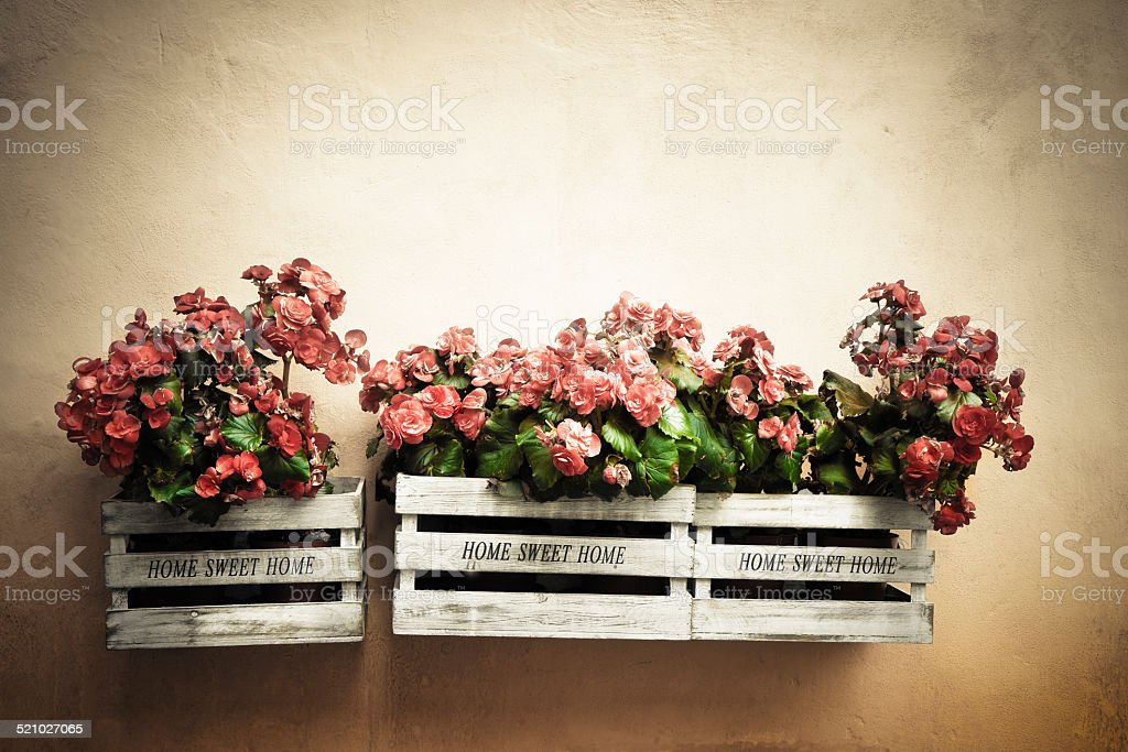 Flowers boxes hanging on the wall stock photo