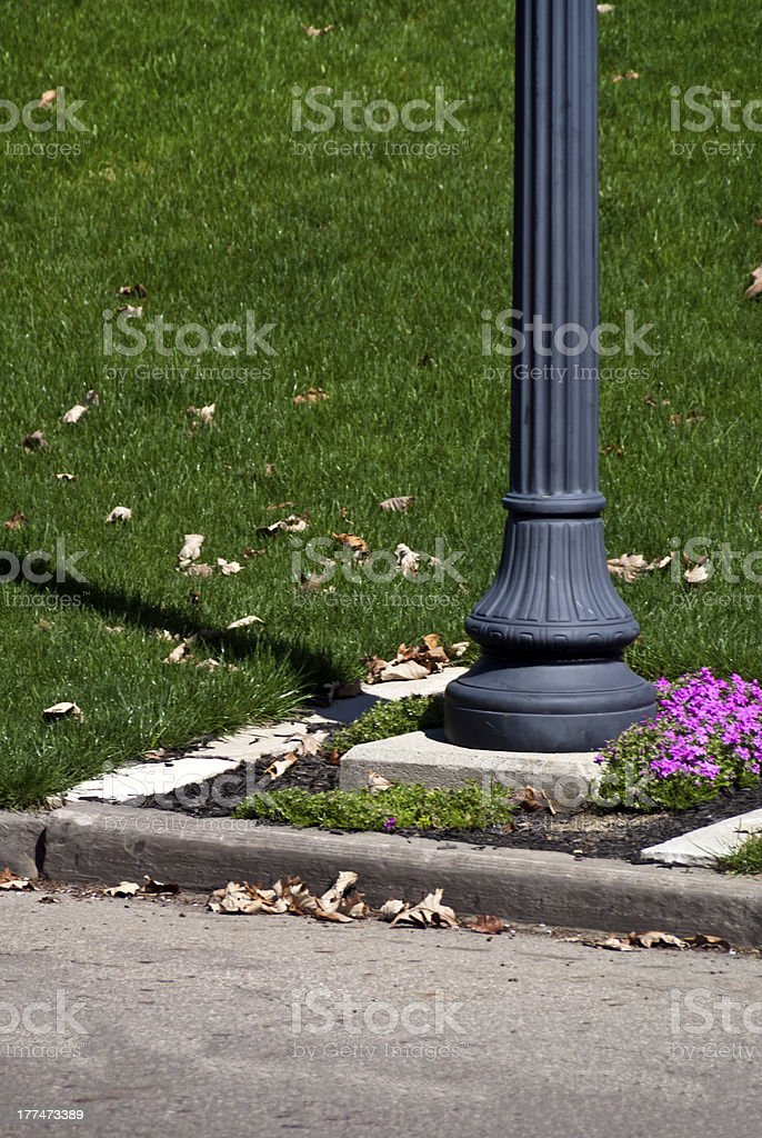 Flowers by the Lamp Post royalty-free stock photo