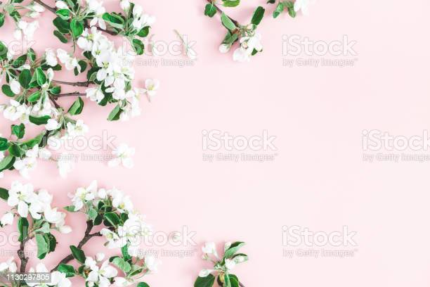 Flowers composition apple tree flowers on pastel pink background picture id1130297805?b=1&k=6&m=1130297805&s=612x612&h=clorpkzaenql9shbnmv9fyom82 b0ugl28xnroiot4w=