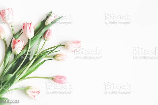 Flowers composition bouquet made of pink tulip flowers on white day picture id1131195646?b=1&k=6&m=1131195646&s=612x612&h=mym6p1qlmw1 jxh5zezmrwcrgfpfoqvdhdqp4zdxyle=