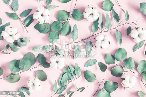 Flowers composition. Eucalyptus leaves and cotton flowers on pastel pink background. Flat lay, top view