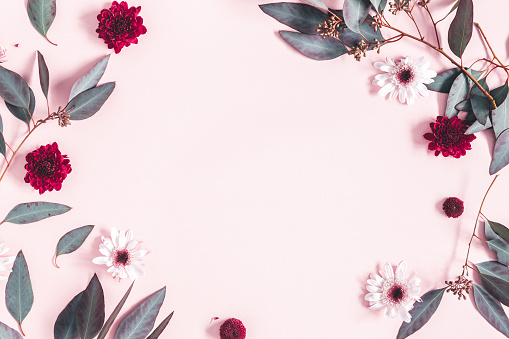 Flowers composition. Eucalyptus leaves and pink flowers on pastel pink background. Mothers day, womens day concept. Flat lay, top view, copy space