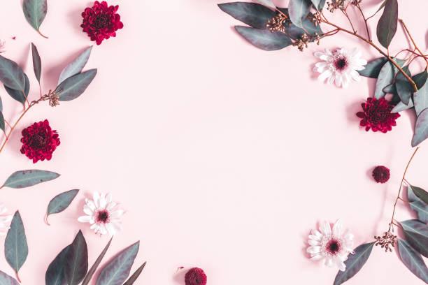 composizione dei fiori. foglie di eucalipto e fiori rosa su sfondo rosa pastello. festa della mamma, concetto di festa della donna. lay piatto, vista dall'alto, spazio di copia - flat lay foto e immagini stock
