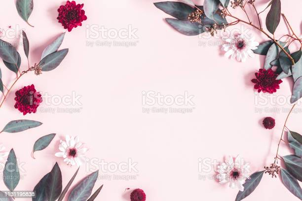Photo of Flowers composition. Eucalyptus leaves and pink flowers on pastel pink background. Mothers day, womens day concept. Flat lay, top view, copy space