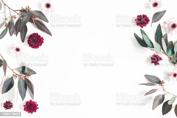 Flowers composition eucalyptus leaves and pink flowers on white flat picture id1094778422?b=1&k=6&m=1094778422&s=612x612&h=yycb5ykb09wahho4qvjsoqhzmda79tkmt7gut60ujn4=