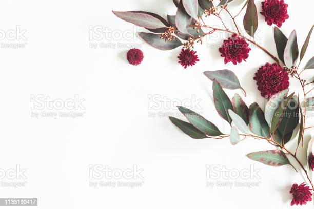 Flowers composition eucalyptus leaves and red flowers on white flat picture id1133190417?b=1&k=6&m=1133190417&s=612x612&h=ndwguu7zv7pxtt1pu9h2j8gvxz oeepihkrzpiod4we=