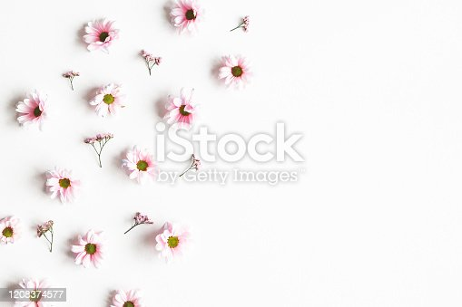 Flowers composition. Frame made of pink flowers on white background. Flat lay, top view