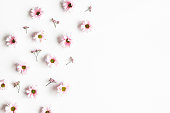 istock Flowers composition. Frame made of pink flowers on white background. Flat lay, top view 1208374577