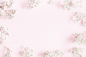 istock Flowers composition. Gypsophila flowers on pastel pink background. Flat lay, top view, copy space 1127773732