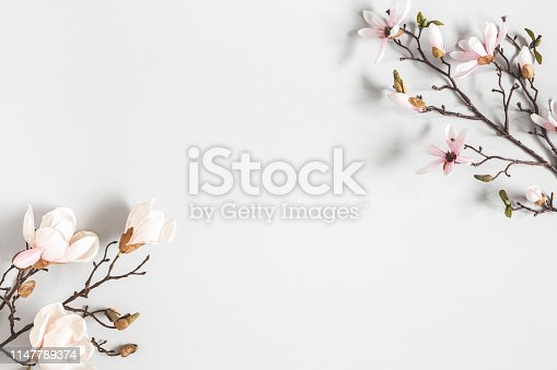 istock Flowers composition. Magnolia flowers on pastel gray background. Flat lay, top view, copy space 1147789374