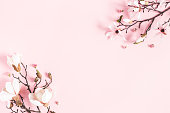 istock Flowers composition. Magnolia flowers on pastel pink background. Flat lay, top view, copy space 1137409419