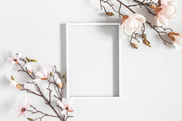 Flowers composition. Magnolia flowers, photo frame on pastel gray background. Flat lay, top view, copy space stock photo