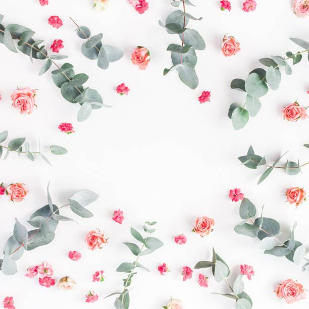 Flowers composition on white background flat lay top view picture id905830774?b=1&k=6&m=905830774&s=612x612&w=0&h=f65a36r1marxtjtaubjsgi5m5ye8j49bneexje90bzq=